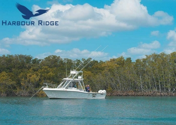 Treasure Coast Fishing: See What's Biting in October Harbour Ridge style=
