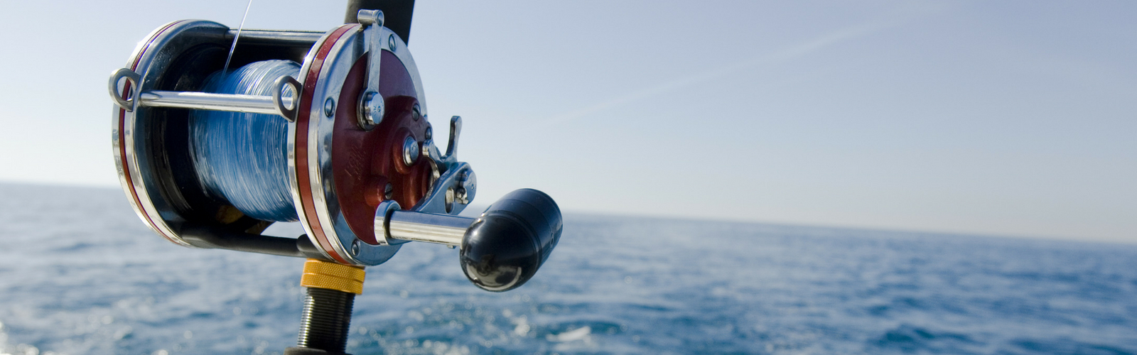 Harbour Ridge Fishing Forecast