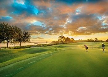 This Photo-Worthy Golf Club Encompasses a Rare Florida Landscape Harbour Ridge style=